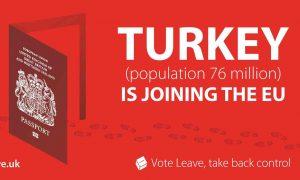 Vote Leave campaign poster, 2015